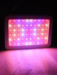 Недорогие -1 комплект 600 W 3078 lm 60 Светодиодные бусины Полного спектра Простая установка Для парниковых гидропоники Растущие светильники Тёплый белый Белый Красный 85-265 V Деловой Дом / офис