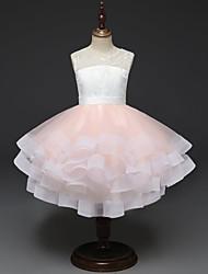 cheap -Kids / Toddler Girls' Sweet / Cute Patchwork Patchwork Sleeveless Knee-length Dress Pink