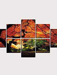 billige -Trykk Valset lerretskunst - Landskap Blomstret / Botanisk Klassisk Moderne