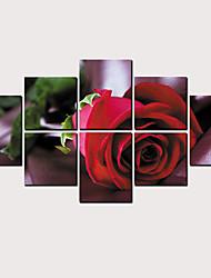 hesapli -Boyama Haddelenmiş Kanvas Tablolar - Manzara Çiçek / Botanik Klasik Modern
