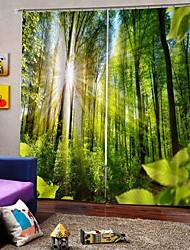 Недорогие -европейский стиль многоцелевой утолщенные шторы из чистого полиэстера теплоизоляция солнцезащитный крем светозащитная водонепроницаемая шторка для ванной офисная студия звукоизоляционные и