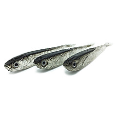 "10 pcs Soft Bait Fishing Lures Soft Bait Shad Soft Jerkbaits Gray g/Ounce,80 mm/3-1/4"" inch,Silicon Sea Fishing Freshwater Fishing"