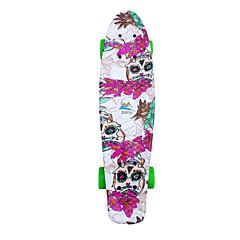 Cruisers Skateboard Standardi Skateboards Ammattilaisten PP (polypropeeni) Kukka
