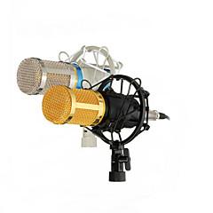 Dinamik kayıt bm800 kayıt profesyonel kapasitif mikrofon mikrofon stüdyo ses