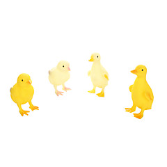 Vzdělávací hračka Hračky Kachna Dinosaurus Zvířata Chlapecké 4 Pieces