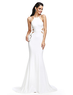 cheap Evening Dresses-Mermaid / Trumpet Spaghetti Strap Court Train Jersey Beautiful Back Prom / Formal Evening Dress with Sash / Ribbon by TS Couture®