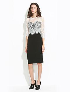 cheap Women's Dresses-Women's Sophisticated Bodycon Lace Dress - Color Block