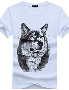 billige Herremote og klær-Bomull Rund hals Store størrelser T-skjorte Herre