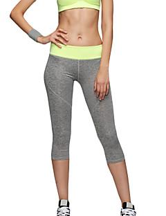 billiga Träning-, jogging- och yogakläder-Dam Yoga byxor - Grön, Blå, Rosa sporter Sexig, Mode Elastan 3/4 Strumpbyxor / Cykling Tights / Leggings Pilates, Motion & Fitness,