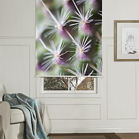 povoljno Sjenila-fotografske umjetnosti stil lopta kaktus roletni
