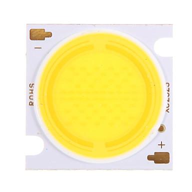 COB 2700-2900 lm LED Chip Aluminium 30 W