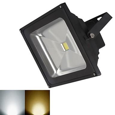 3000-3200/6000-6500 lm LED Flutlichter 1 Leds COB Warmes Weiß Kühles Weiß DC 12V