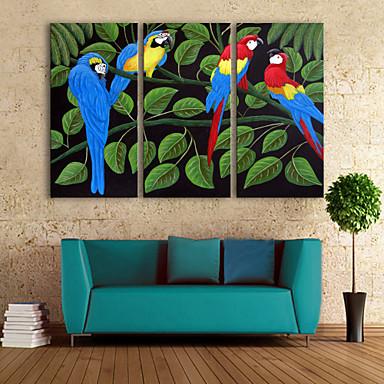 E-home® 3 tuval sanat renk papağan dekorasyon boyama seti gergin