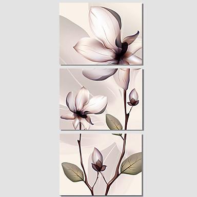 Pop Art / Botânico / Moderno Impressão em tela 3 Painéis Pronto para pendurar , Horizontal