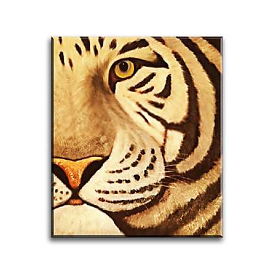מצויר ביד בעלי חיים אופקי,קלסי סגנון ארופאי מודרני מסורתי ריאליסטי ים- תיכוני פסטורלי בד ציור שמן צבוע-Hang קישוט הבית פנל אחד