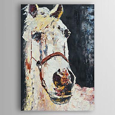 Handgeschilderde Dieren Olie schilderijen,Modern Eén paneel Canvas Hang-geschilderd olieverfschilderij For Huisdecoratie