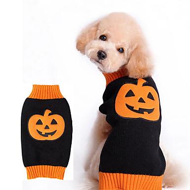 Hund Kostume Hundeklær Cosplay Blomster/botanikk Oransje Kostume For kjæledyr
