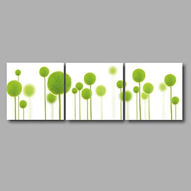 Estampado Floral / Botánico Modern Tres Paneles