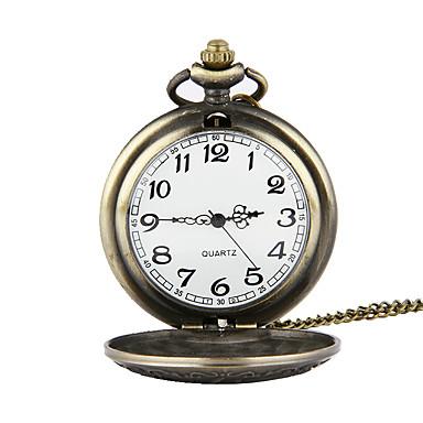 Недорогие Женские часы-Муж. Карманные часы Японский Кварцевый Бронза 30 m Повседневные часы Аналоговый Кулоны - Бронзовый