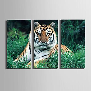 Tela de impressão 3 Painéis Tela de pintura Vertical Estampado Decoração de Parede Decoração para casa