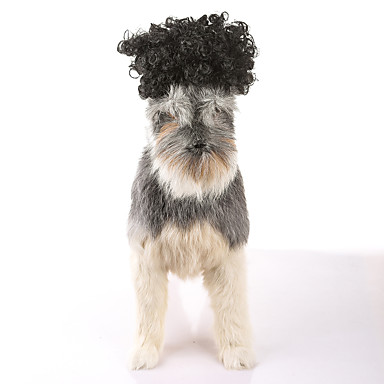 Gato Cachorro Natal Perucas Roupas para Cães Festa Fantasias Casual Dia Das Bruxas Ano Novo Sólido Preto Ocasiões Especiais Para animais