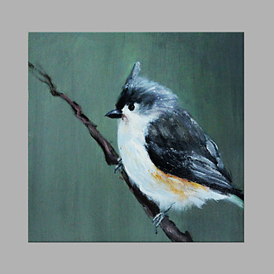 Hand-Painted Animals Square, Artistic Canvas Oil Painting Home Decoration One Panel