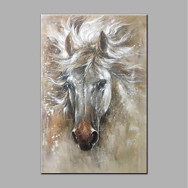 Hang-Malowane obraz olejny Ręcznie malowane - Zwierzęta Zwierzęta Brezentowy
