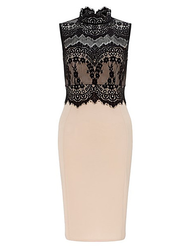 Women's Party Going out Daily Vintage Street chic Sophisticated Bodycon Sheath Lace Dress
