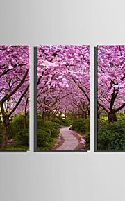 """Blomstret/Botanisk Moderne Europeisk Stil, Tre Paneler Lerret Lodrett Trykk  """"Veggdekor"""" Hjem Dekor"""