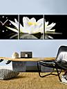 stil modern perete panza floral set ceas din 3