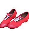 Piele si panza pantofi de dans pentru femei pentru Modern / Ballroom (alte culori)