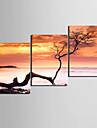 Stretchad Kanvastryck Kanvas set Blommig/Botanisk Moderna, Tre paneler Duk Horisontell Tryck väggdekor Hem-dekoration
