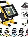 10W Proiectoare LED 1 led-uri LED Putere Mare Reîncărcabil Alb Rece 1000lm 6500K AC 100-240V