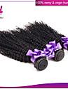 Cheveux Malaisiens Bouclé / Classique / Kinky Curly Cheveux Vierges Tissages de cheveux humains 3 offres groupées Tissages de cheveux