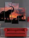 Intins Canvas arta de imprimare Elephants animale Set de 4