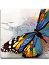 HANDMÅLAD Djur Fyrkantig, Moderna Duk Hang målad oljemålning Hem-dekoration En panel