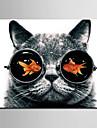 Animal Canvas Print Un Panou Gata să stea , Pătrat