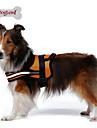Câine Hamuri Reflexiv Respirabil Mată Plasă Material cu burete Nailon Plasă Negru Portocaliu Rosu