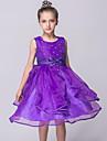 rochie de mireasa genunchi lungime rochie fata rochie - organza gât de bijuterie fără mâneci cu briuță de mii