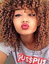 Ljudska kosa Lace Front Perika stil Brazilska kosa Kinky Curly Perika 130% Gustoća kose s dječjom kosom Prirodna linija za kosu Afro-američka perika 100% rađeno rukom Žene Kratko Srednja dužina