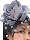 satin fascinatori net flori birdcage voal headpiece stil elegant