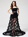 Linia -A Pătrat Lungime Podea Tulle Seară Formală Rochie cu Pliuri de TS Couture®