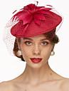 in fascine de in, pălării, voaluri de păsări, căști, clasic, feminin, stil