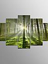 Stretchad Kanvastryck Abstrakt, Fem paneler Duk Horisontell Tryck väggdekor Hem-dekoration