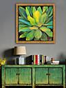 Botanic Floral/Botanic Ilustrație Wall Art,PVC Material cu Frame For Pagina de decorare cadru Art Sufragerie Dormitor Bucătărie Cameră