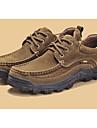 Bărbați Pantofi Piele Primăvară Confortabili Oxfords Maro / Maro Închis